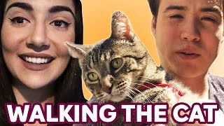Download Walking Our Cat For The First Time • Saf & Tyler Mp3 and Videos