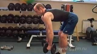 Комплекс гантельной гимнастики  для начинающих
