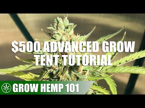 Advanced Grow Tent & Indoor Timelapse Grow Tutorial from YouTube · Duration:  12 minutes 34 seconds