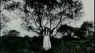 鳳山雅姫 - 月に叢雲 花に風