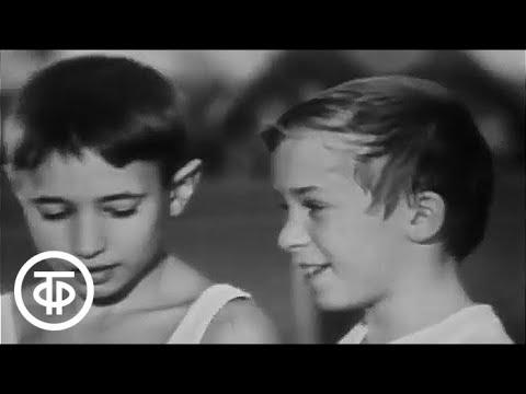 Ребята с нашего двора. История 8. Вторая попытка (1973)