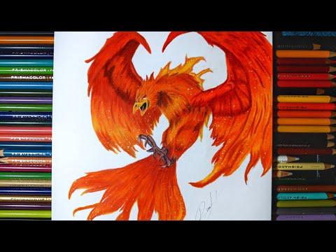 Cómo dibujar un ave fénix con colores Prismacolor premier