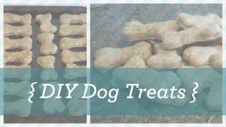 DIY Homemade Dog Treats