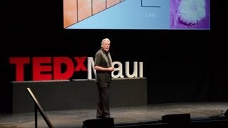 Gary Greenberg: The beautiful nano details of our world