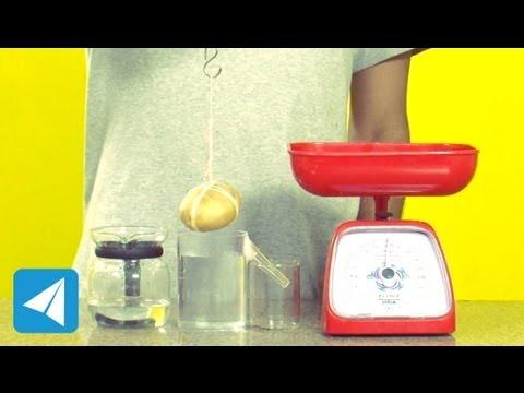 Archimedes Principle demonstration | Buoyancy | Physics