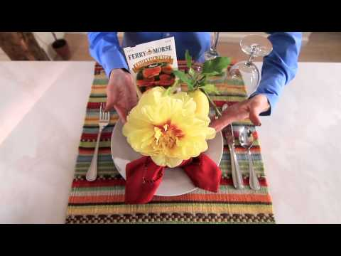 Summer Parties: How to Add Color to White Dinnerware Sets   Pottery Barn