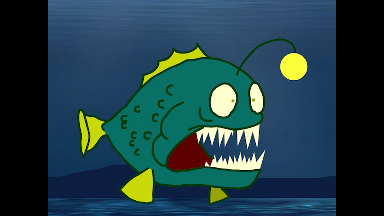 Anglerfish mating fish facts youtube for H m fish count