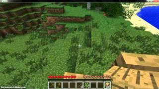 Minecraft- New Seires Part 1