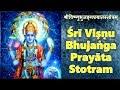Vishnu Bhujanga Prayata Stotram | Adi Shankaracharya | POWERFUL VISHNU MANTRA