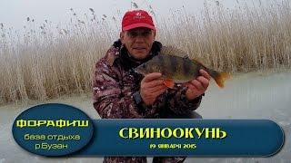 Астраханская рыбалка по первому льду.База ФораФиш..