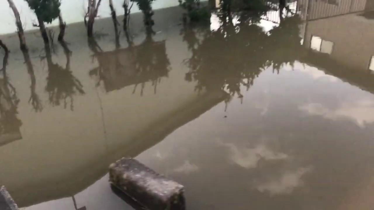 19 いわき 市 号 台風 令和元年東日本台風(台風第19号)に関するお知らせ|国税庁