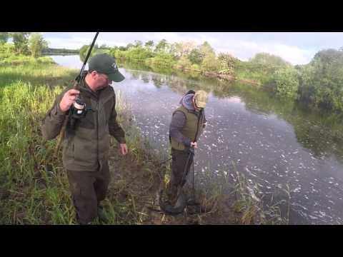 Salmon Fishing River Moy