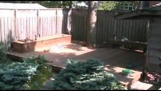 Wood Intentions   By Torontodeckbuilder