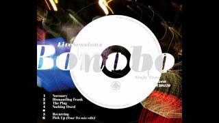 Bonobo - The Plug live Video