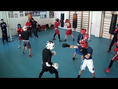 Боксёры на сборах