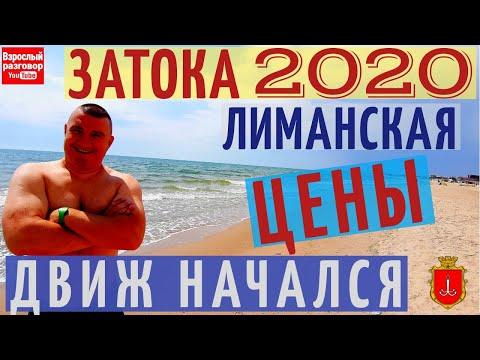 Затока 2020 Сезон
