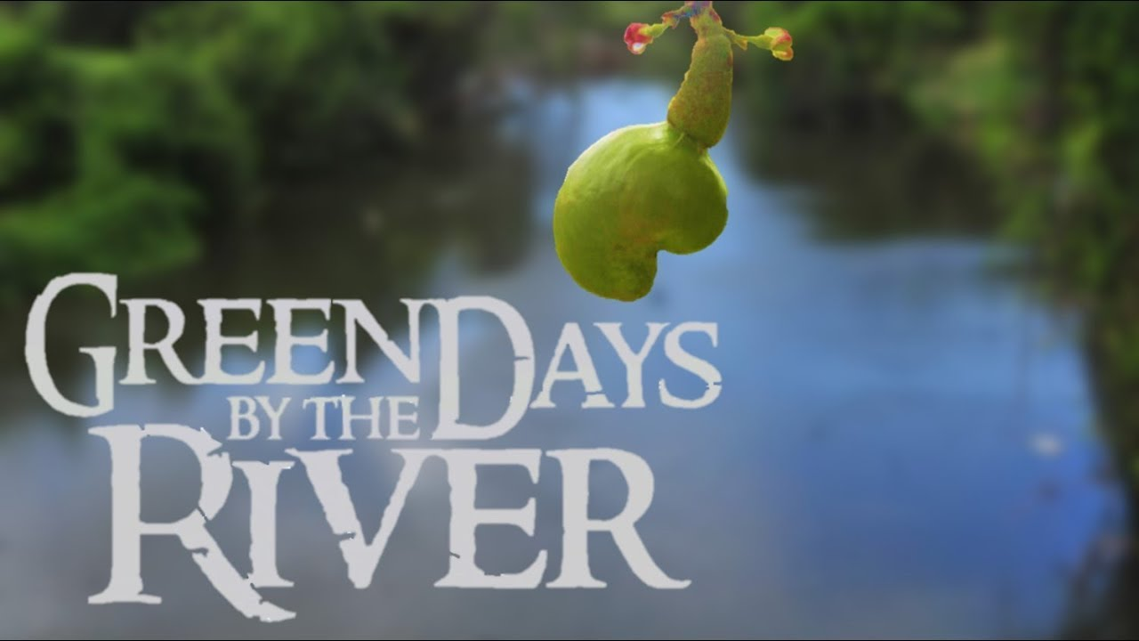 green days by the river essay Database of free environmental sciences essays - we have thousands of free essays across a wide range of subject areas sample environmental sciences essays.