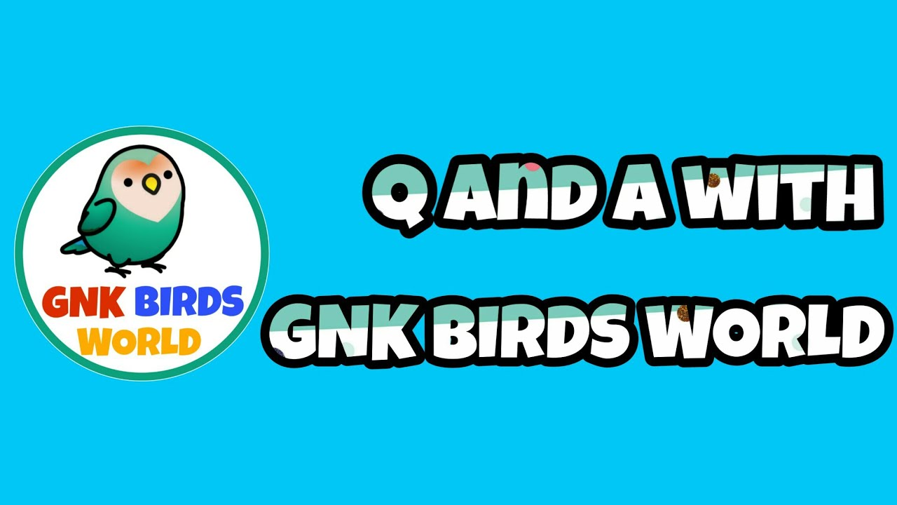 Q and A with GNK BIRDS WORLD/ EPS-1 in தமிழ்