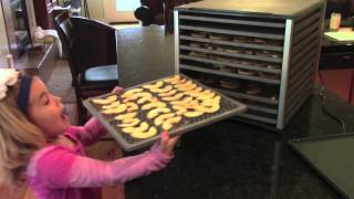How To Make Dried Apple Chips - Lem 10 Tray Dehydrator Dehydrate Apples
