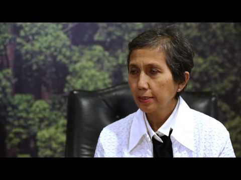 Forests Asia 2014: Sophia Gnych & Felia Salim on sustainability within the banking sector