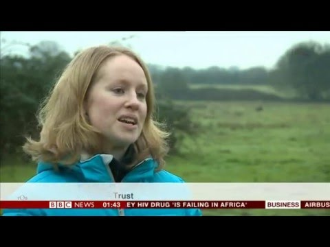 REBECCA MORELLE:--: BBC: Asia Business Report - 29 Jan. 2016 - Polecat Conservation
