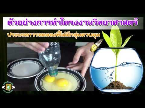 โครงงานวิทยาศาสตร์ประเภทการทดลอง (เมืองไทยสมาร์ทบุ๊ก)
