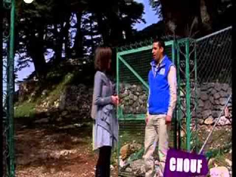 Shouf cedar nature reserve OTV Lebanon
