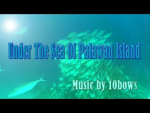 Under The Sea Of Palawan Island, Philippines