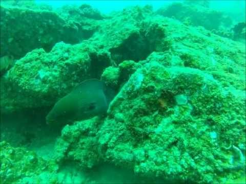 Diving with GoPro HD in the Andaman Sea near Phuket