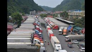 Kinh tế Việt Nam giữa dịch corona bị ảnh hưởng thế nào?| VTV24