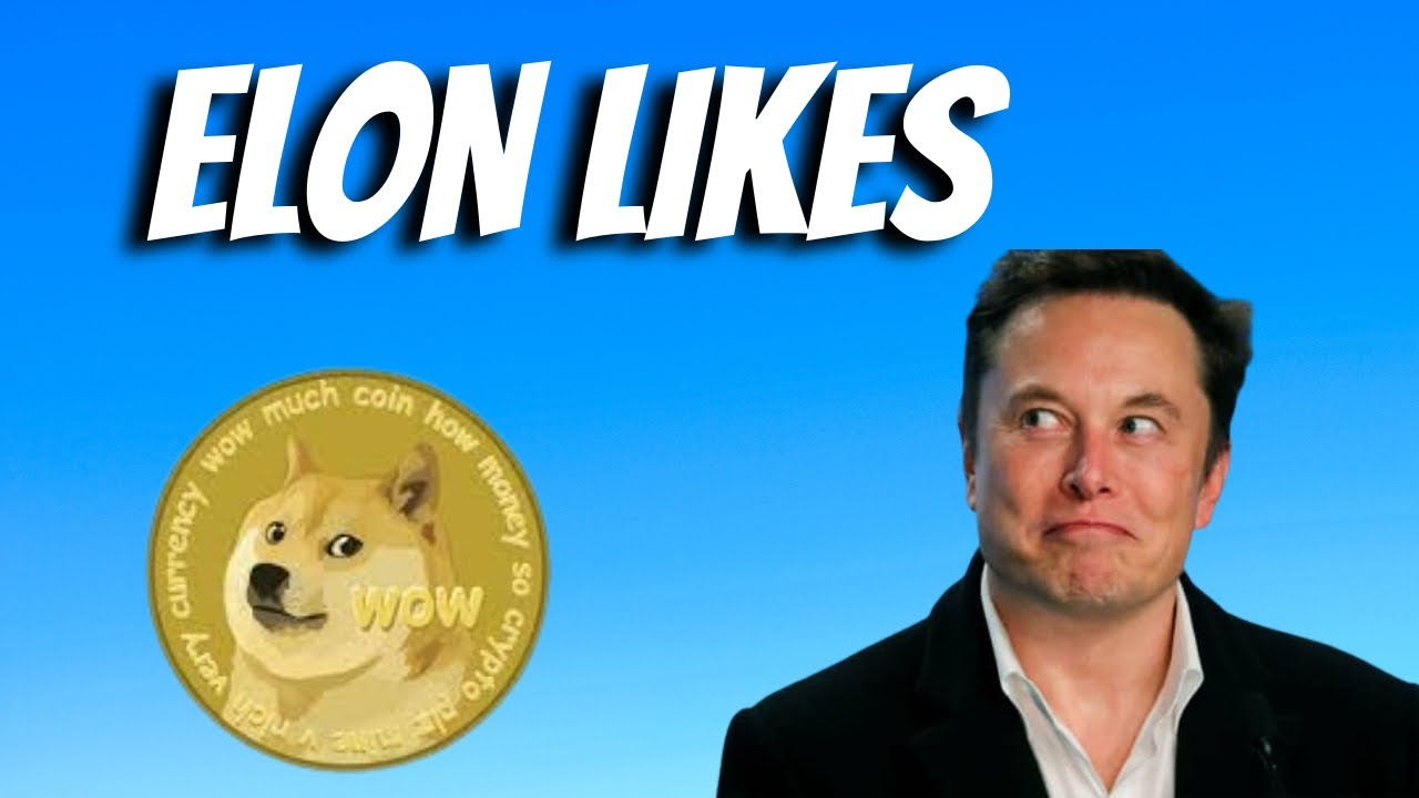 'It's Doge Time': Dogecoin Surges As Reddit Traders Push To Make ...
