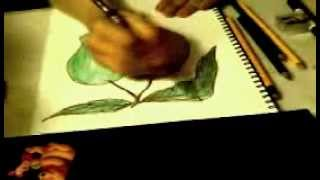 How To Draw a MANGO fruits