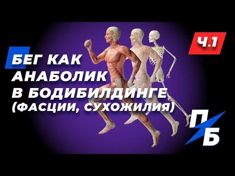 Бег как анаболик в бодибилдинге. Влияние на фасции и сухожилия. Обмен веществ. Ч.1. Бодитюнинг #41