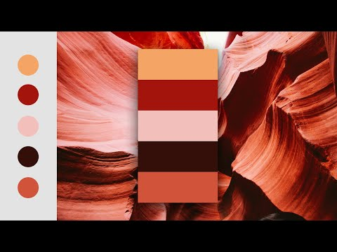 How To Create A Color Palette In Photoshop | Color Palette Generator