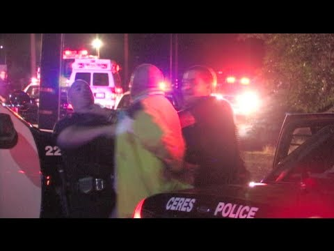 Suspect Resisting Arrest & Fighting With Police At A Fatal Traffic Collision - Caught On Camera