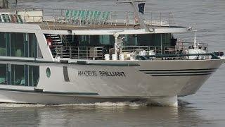 Hotelschiff Amadeus Brilliant auf dem Rhein bei Düsseldorf