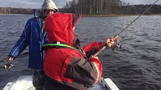 Др АМ + Fishing
