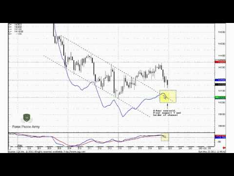 Forex peace army blufx