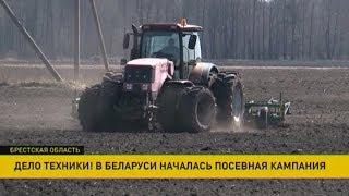 Посевная кампания началась в Беларуси