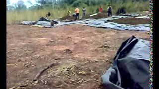 Maconha do Paraguai . thumbnail