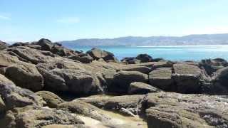 Charca con mejillones en costa oeste de A Frouxeira (Valdoviño - A Coruña)