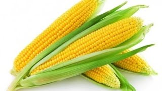 Как приготовить кукурузу для рыбалки [ 2015 @ ]