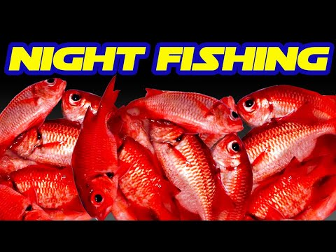 Fishing For Red Fish At Night In Hawaii | Menpachi Fishing | Fishing In Hawaii | Hawaii Fishing