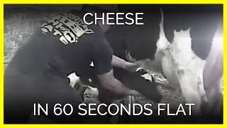 Cheese in 60 Seconds Flat