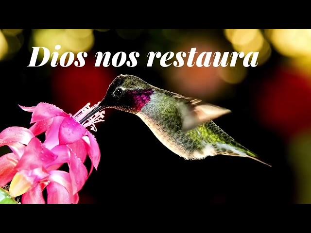 Dios nos restaura