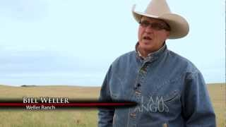 I Am Angus: Bill Weller, Kadoka, South Dakota
