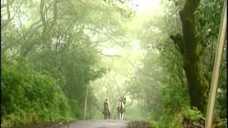 Tumne Rakh To Li Tasweer Hamari (Full Song) Film - Phir Lehraya Lal Dupatta