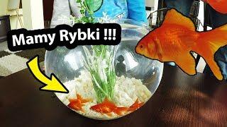 Rybki Akwariowe w Szklanej Kuli !!! - Ile to Kosztuje? (Vlog #271)