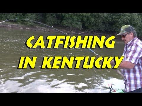Still Fighting Kentucky's Catfishing Issues 2013