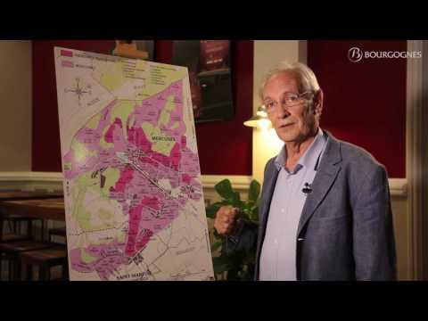 Mercurey explained by Jean-Pierre Renard